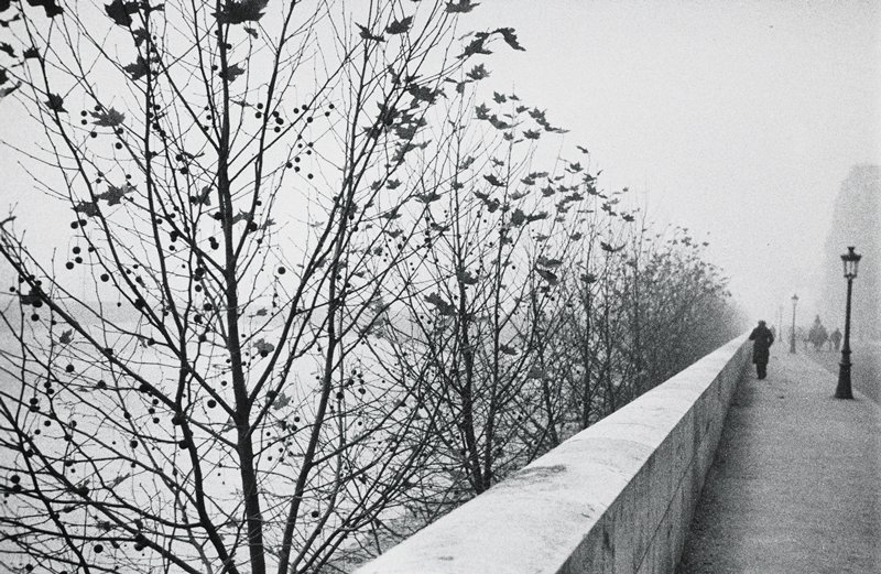 trees with few leaves and scattered berries at left beyond short stone wall at edge of a walkway with streetlights; figures and carriage(?) in distance; foggy view