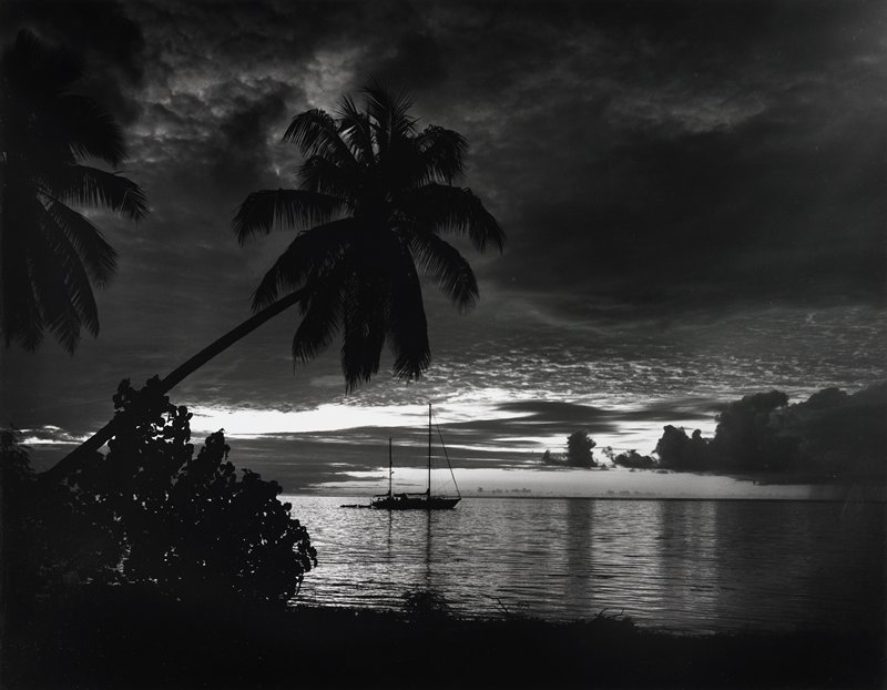 palm tree at L leaning over water; sailboat at center; dark cloudy sky