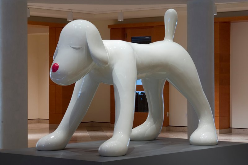 white dog standing on all four paws; upright short tail; round red nose