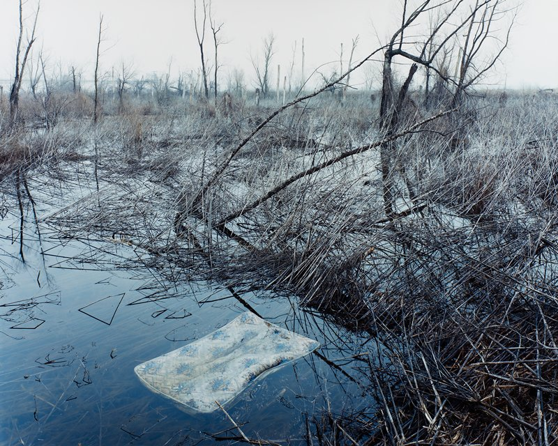 mattress floating in water with trees and leafless branches