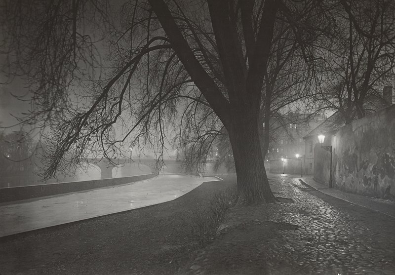 night scene with bare tree next to river with wall on right