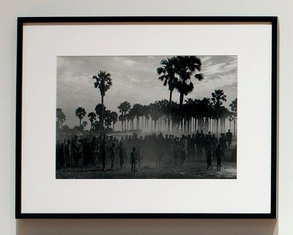 black and white photograph of crowd of walking people in foreground and palm trees in background; black wood frame with plexi