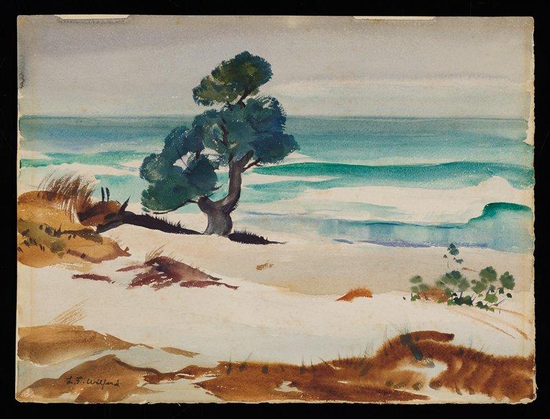 sand dunes, one tree and ocean; grey sky