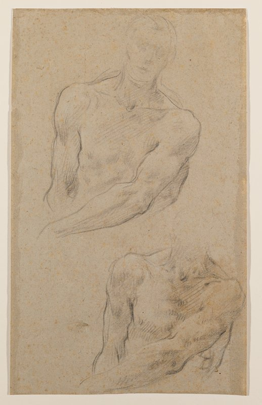 two studies of a man's torso; top study has sketched-in head and face; each study in the same pose, with PL arm across stomach