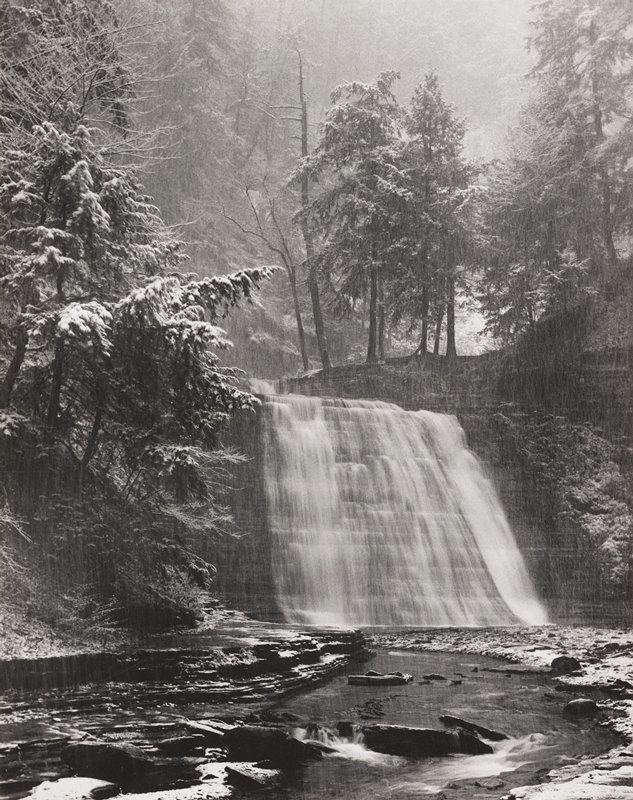pine and deciduous trees in the rain with a stepped waterfall at center; rocks in water in foreground