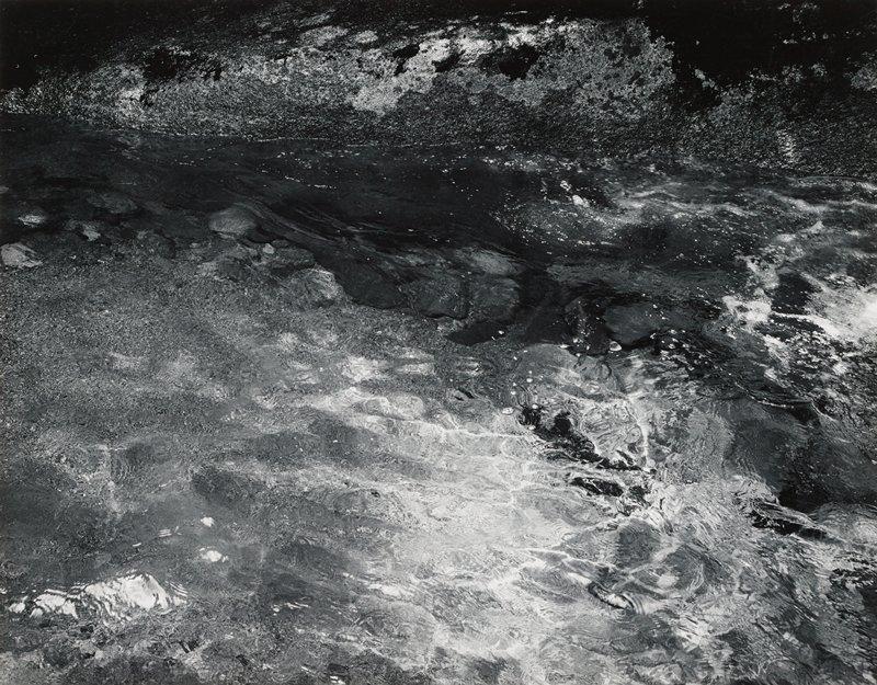 abstract image; water ripples; moss at top