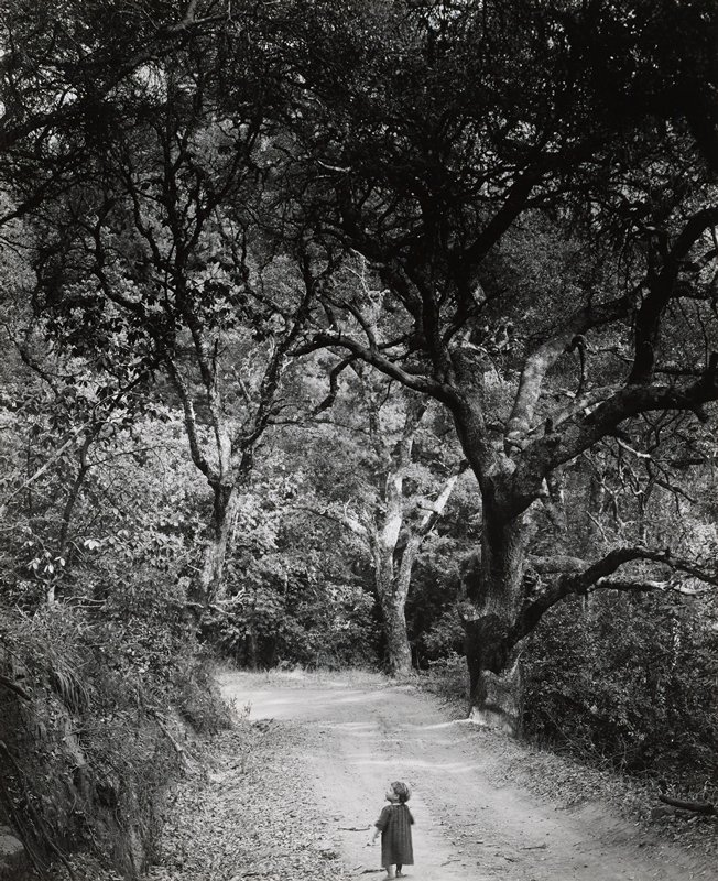 barefooted child at bottom center on dirt road, wearing a dress, looking toward left; dense trees and foliage on both sides of road