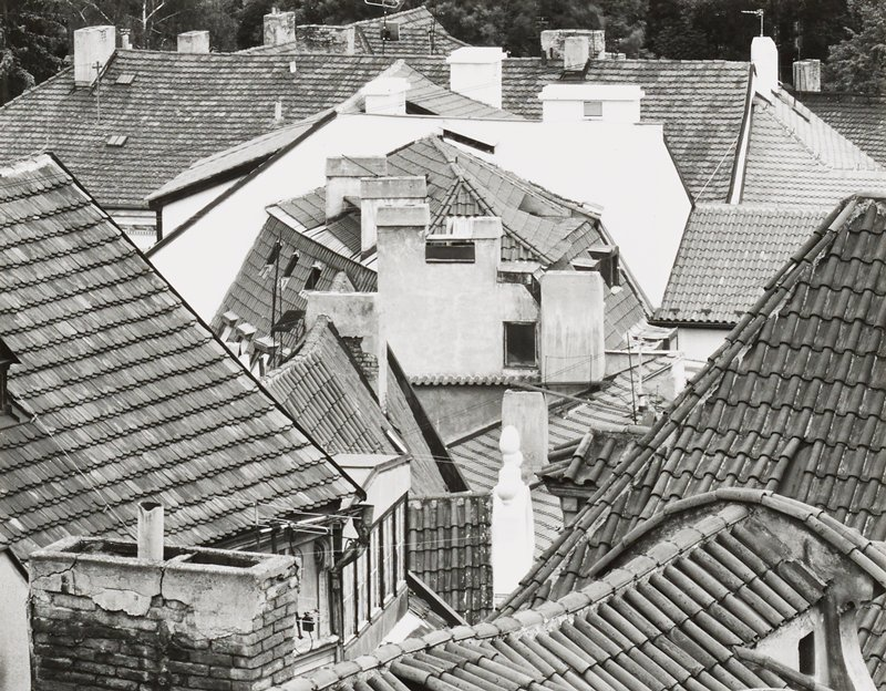 irregular tile rooftops