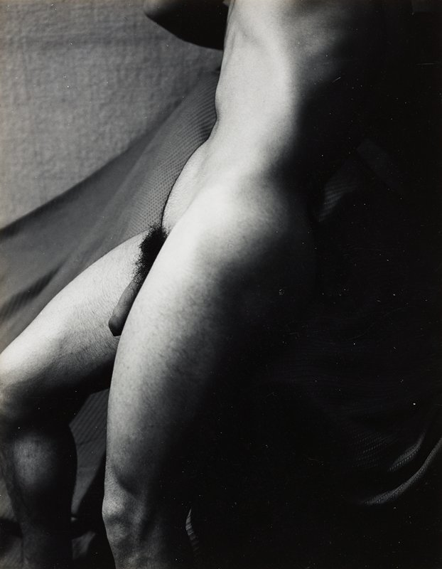 torso and upper legs of nude male, in profile from PL