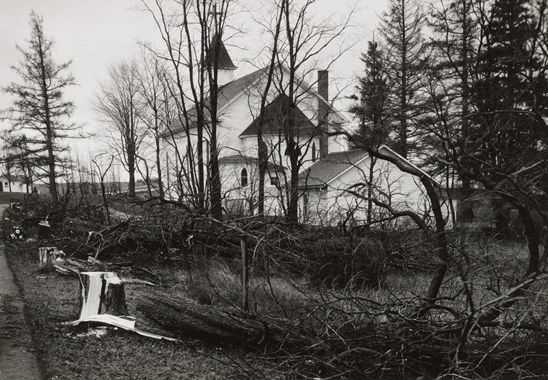 white church with bell tower at far side; several additions at different levels on near side; view through bare trees, with pine trees at left and right and several fallen trees in foreground