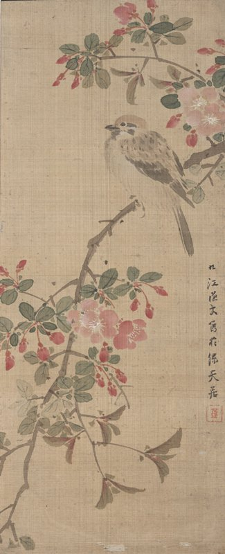 small songbird perched on blossoming branch with pink blossoms; branch extends from URC to LLC; bird is situated near URC; small inscription along R edge in black ink