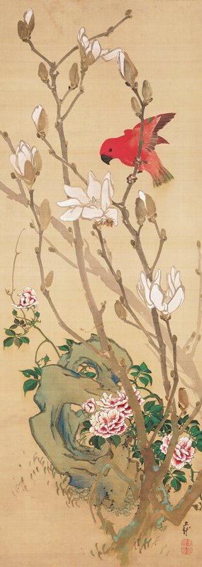 small red bird with hooked black beak about to perch on branch attached to small tree with white blossoms; green tinted rock with hollows in background with vivid white and burgundy flowers near bottom