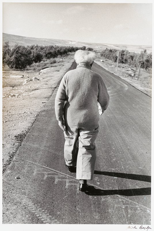elderly man with white hair, seen from back, wearing a sweater and light-colored pants, walking on a road in a desert landscape with some scrubby plants