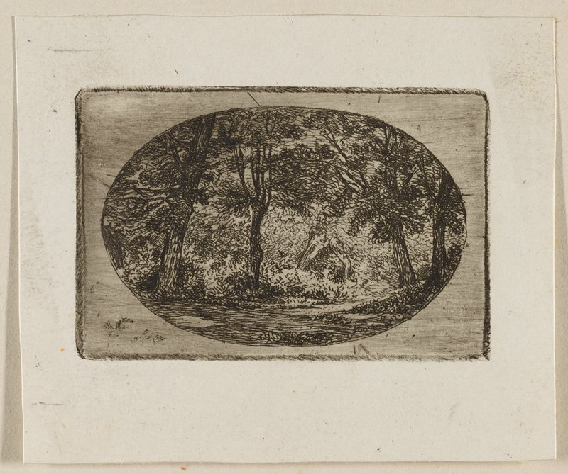 small oval print; grove of trees with bare forest floor; thick foliage in background