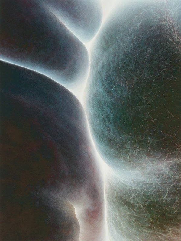 abstract color image; greenish-red, pink and grey body parts; form with short white-appearing hairs at right