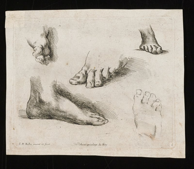 five studies of feet
