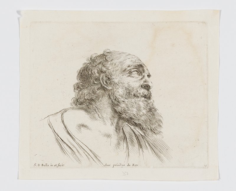 head of an old bearded man with curly hair, from PR side, looking up