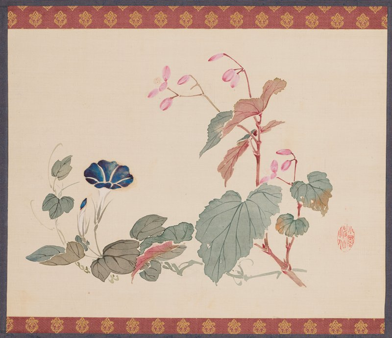 Japanese hanging scroll depicting a painted image of a blue morning glory plant on left half of painting and a pink begonia plant on right portion; both flowers are flanked by leaves and foliage; red calligraphy stamp located on right half of painting to the side of begonia; panting is lined on top and bottom with mauve bands of fabric with gold woven ornamental floral shapes; central band of fabric on mount is a periwinkle blue color with subtle embroidered floral design in the same blue color; top and bottom of scroll has peach silk band of fabric; two strips of fabric in the same mauve color with gold floral embroidery hang vertically from the top rod of scroll