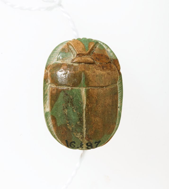 Scarab, steatite, Egyptian, Hyksos Period, century? cat. card dims H. 5/8', W. 7/8' steatite with pale green glaze. Heiroglyphs: truth and the two lands; unknown animal.
