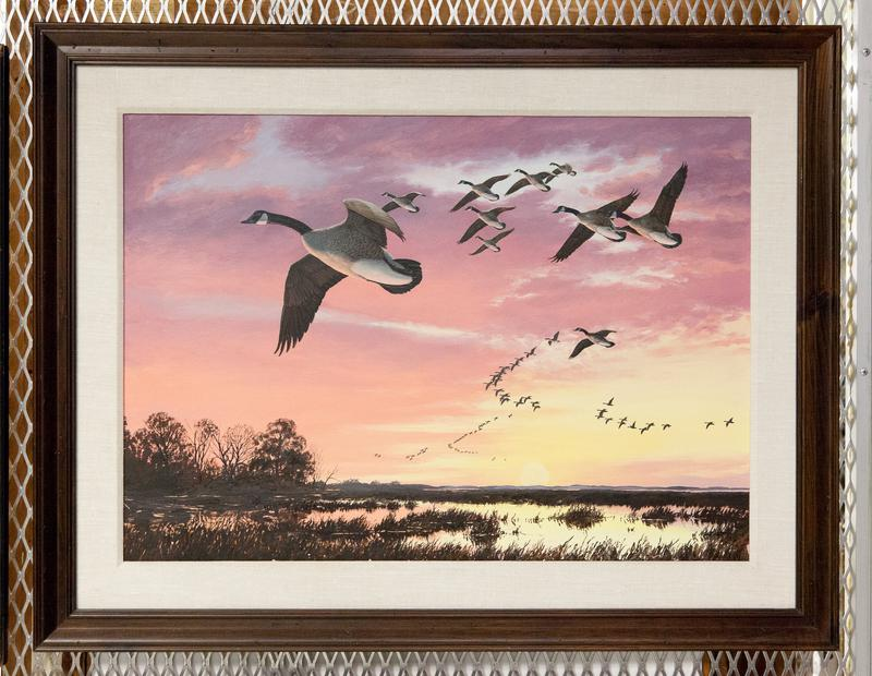 Animal. Bird. Fowl. Canada geese in flight against a red sky, marsh with thicket of trees to left.