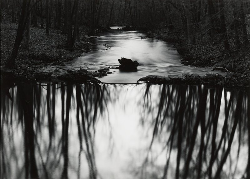 stream with reflection of trees in front half
