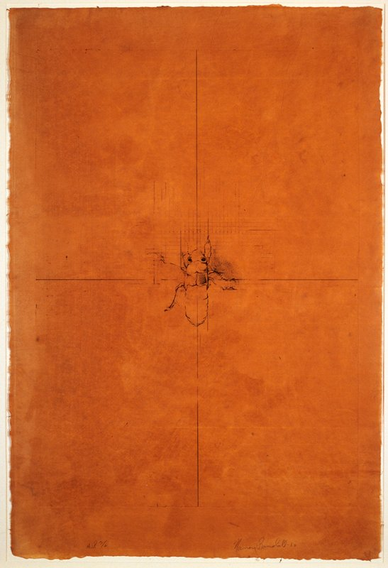 """From a suite of four etchings depicting four distinct phases in the life cycle of the periodical cicada. The two intersecting lines dividing the image into four quadrants allude to the """"four corners"""" are of the Southwestern United States, where Utah, Colorado, Arizon, and New Mexico meet and where the artist first encountered her subject."""