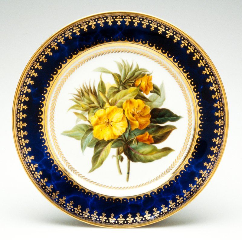 Rim with a 'gros bleu marbrè' ground and bands of gilt neo-classical inspiration. Center painted with two branches of a yellow flower with lush, thick foliage, the cavetto with a gilt band of laurel leaves.