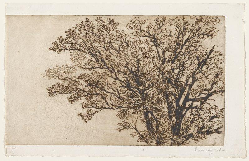 S. [1858]