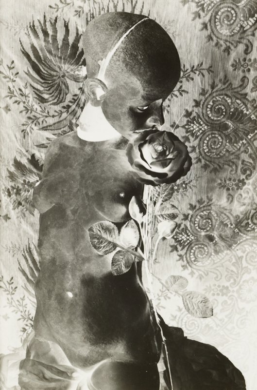 negative image-black and white; nude woman with rose; tapestry-like backdrop