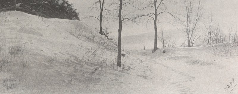 small hill at L, covered with snow; footprints wind between bare trees; evergreens on top of hill, ULC
