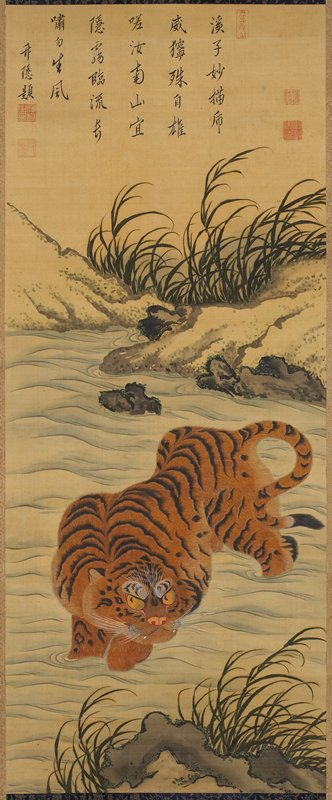 tiger wading across stream; grasses and rocks above and below, on either side of stream; beige and aqua brocade border