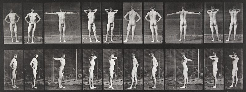 Various poses. From a portfolio of 83 collotypes, 1887, by Edweard Muybridge; part of 781 plates published under the auspices of the University of Pennsylvania