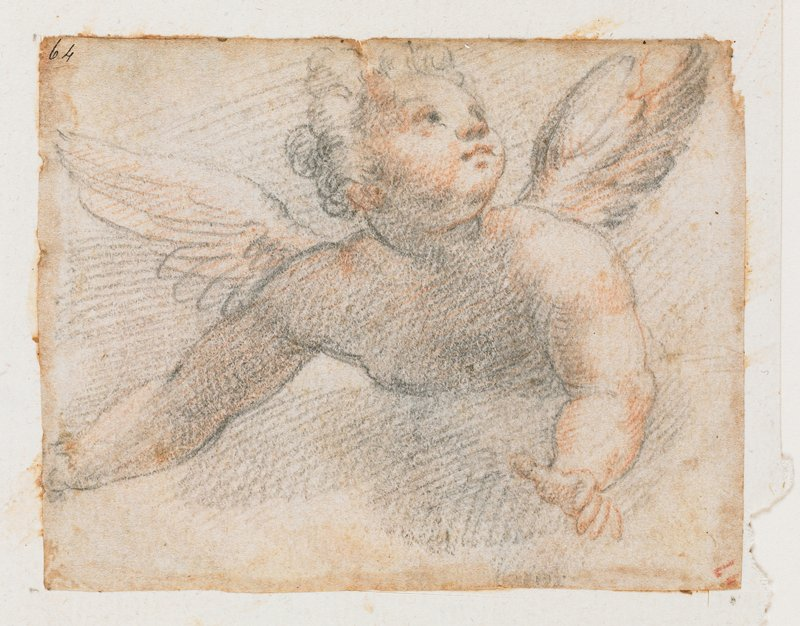 upper torso, arms, head of winged youngster with chubby cheeks, looking up toward URC; torso, arms and head of stretching male figure on back